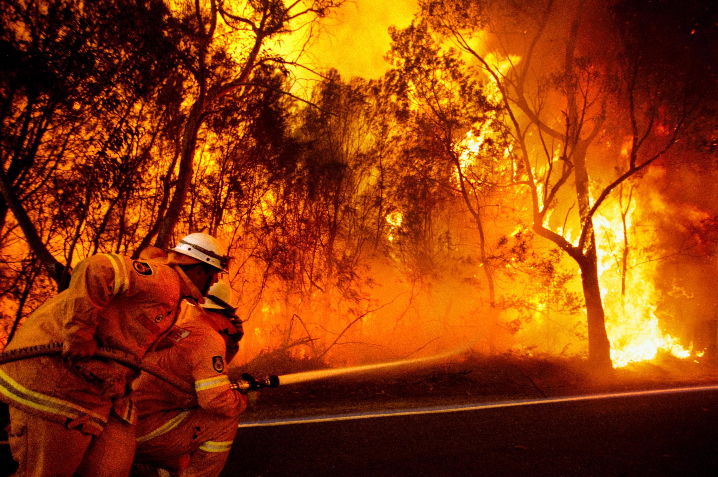 victorian bushfire black saturday 7, 2009, a day later dubbed black saturday on february 7, victorians were told  to brace for a record heat wave—with temperatures soaring to 1155 °f (464.